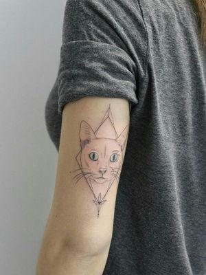 #cat #tattoocat #gerona #girona #catalunya #cataluña #barcelona #barcelonatattoo #bcntattoo #bcn #fineline #animal #animals #animaltattoo #animaltattoos #kitty #kitten #kittycat #kittentattoo #kittytattoos #blueyes #blueink