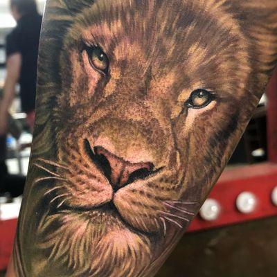Tattoo by Megan Massacre #MeganMassacre #realismtattoos #hyperrealismtattoos #realism #hyperrealism #realistic #lion #nature #animal #cat #kitty #junglecat