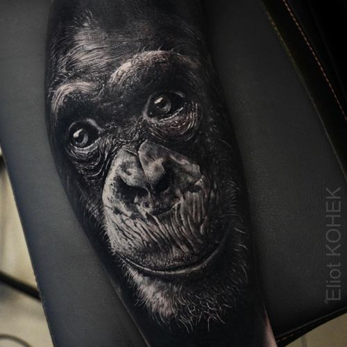 Tattoo by Eliot Kohek #EliotKohek #realismtattoos #hyperrealismtattoos #realism #hyperrealism #realistic #gorilla #monkey #animal #nature #cute