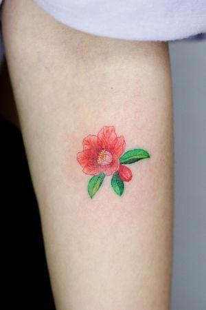 pomegranate flower #flower