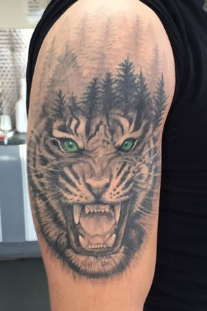 Healed Green eye Tiger Forest