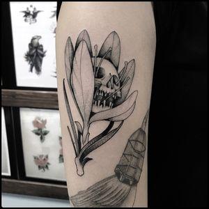 #totemica #tunguska #black #skull #crocus #flower #botanical #tattoo #skullsocietytattooshop #perugia #italy #blacktattooart #tattoolifemagazine #tattoodo #blackworkers #blackwork
