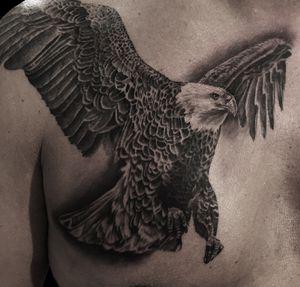 #kwadroncartridges #inkjecta #silverbackink #ink #inkstagram #hannover #braunschweig #blackandgreyrealism #portraittattoo #realism #realistic #eagle #Adlertattoo