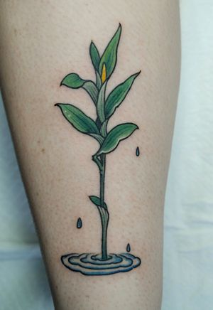 Green.  Done at @notjustagirl_flashday  Huge thanks for @gardeningwithannabel🙏  Thanks for your support . I'd love to do more something green and natural. •For bookings you can email me on • ••💌 tattoohabby@gmail.com•• . Or you can call us on : 9555-6316 . . Welcome to  @the_darling_parlour