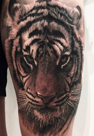 The realistic tiger portrait reference on the thigh