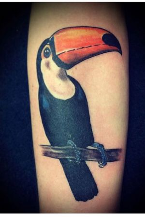 TucanPowerrr' by FerryBoom #BoomInk #cooltattoos #realistic #realism #tucanbird #tattoooftheday #folowme