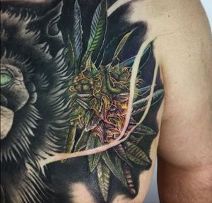 That cali 🔥🔥🔥 #weed #nug #realism #color #ink #inked #losangeles #artist #diversw #tattoos #guyswithtattoos