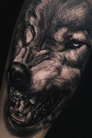 #wolf #inkjecta #hustlebutterdeluxe #magicmooncartridges #theinkedarmy #tattoo #portrait #realism #miguelameliach #ink #color #blackandgrey