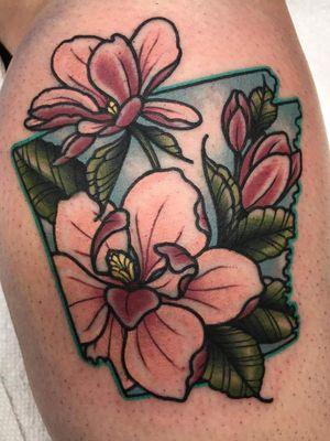 Arkansas with magnolias