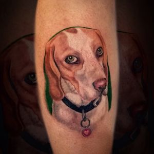 Memorial portrait of this beauty🐶 #dog #tattoo #dogportrait #animalportrait #animaltattoo #art #tattooart #painting #ink #inked #colorrealism #realism #portrait