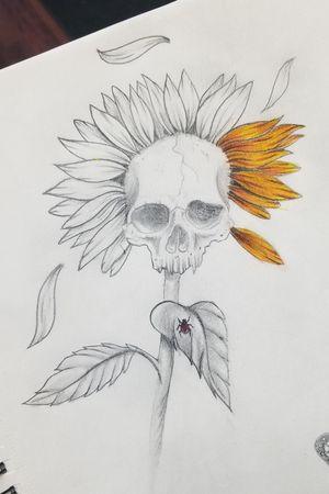 #sketches #drawing #pencildrawing #pencilart #freehand #colorpencil #art #skulls #skullart #daisy #flowers #flowerart