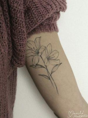 #tattoo #tattooartist #tattooart #flowertattoo #flowerstattoo #flowersleeve #blossomtattoo #floraltattoo #naturetattoo #mariloillustration #catalunya #finelinetattoo #fineline #finelines #finelineart #delicatetattoo #delicatetattoos #tattoosforwomen #tattoosforgirls #smalltatto #smalltattoo #smalltattoos #littletattoos #littletattoo