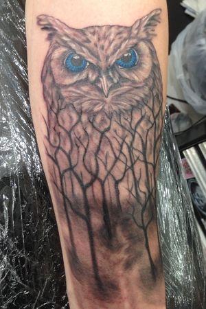 Soft greywash owl.