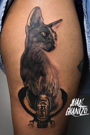 #tattooartist #spnttt #bcnttt #thebesttattooartists #tattoorealistic #tatuajes #tattoo #tattooart #inklife #inked #ink #tattooculture #tattoodo #tattoolife #inkedmag #tattoolifemag #inkedup #tattooistartmag #radtattoos #barcelonatattoo #tattoooftheday #skinartmag #tattoosocial #bastet #spaintattooartist #spanishrealistictattoos #tattoocat #spaintattoo #cat