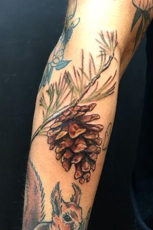 ✨pinecone✨. #tatt #tattoos #fall #color #colortattoo #dallas #femaletattooartist #nature