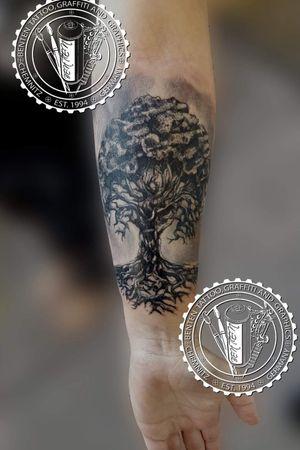 #treeoflifetattoos #treeoflife #treeoflifetattoo #benten #friedrichbenzler #chemnitz #tattoo #leipzig #dresden #zwickau #plauen