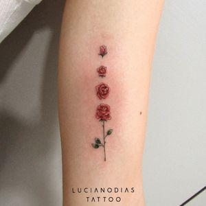 Blossoming rose mini tattoo made by me in Califórnia, Brazil. #rose #roses #bloom #bossom #flower #floral #minimalist #minitattoo