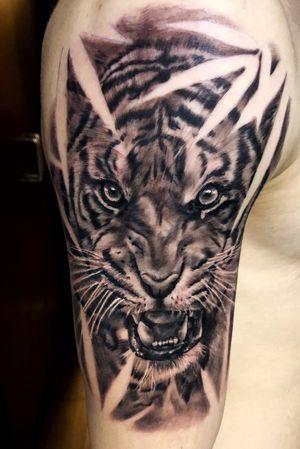 Tiger style! #blackandgrey #tiger