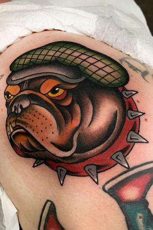Classic bulldog !