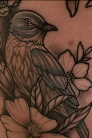 Closeup healed bkuebird floral thigh piece by Kevin Farrand at have hope tattoo