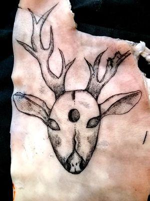 Deer#exsperiment#tatoomywork#follow4follow#family#swag