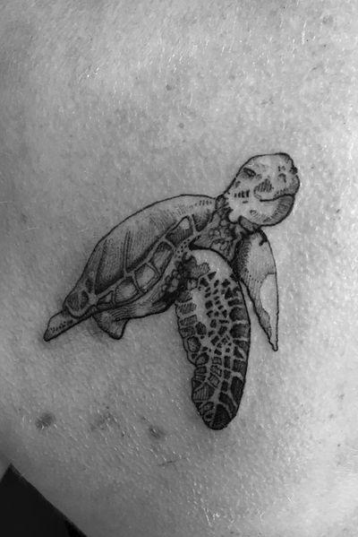 Little #turtle #nautical #shouldertattoo #fineline