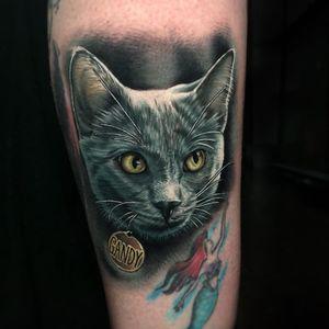 Tattoo by Megan Massacre #MeganMassacre #tattoodoambassador #cat #color #realism #realistic #Hyperrealism #petportrait #feline #cute