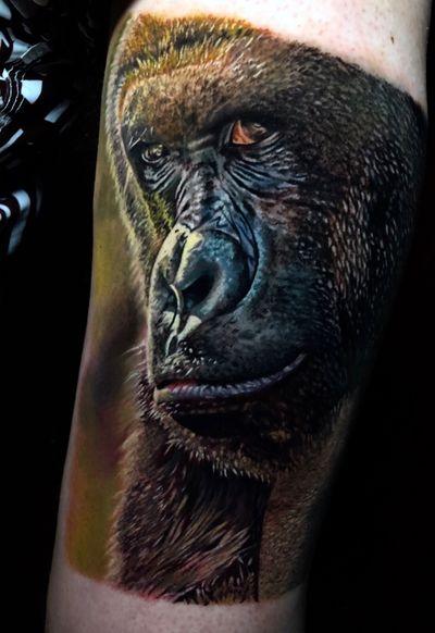 finalizado ontem, 21h de trabalho em 2 dias feito usando @intenzetattooink e @tattooloverscare #gorilla #savannah #safari #animal #tattoo #inked #sullenclothing #intenzepride