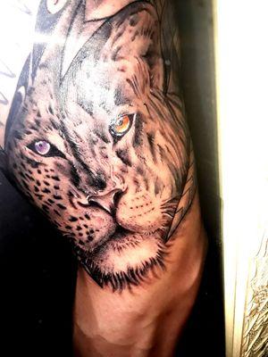 #leopard #lion #halfleopard #halflion #animal #animaltattoo #jungle #leopardtattoo #liontattoo