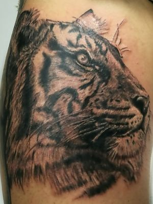 Black and gray tiger tattoo by DG in Eternaltattoo Cr