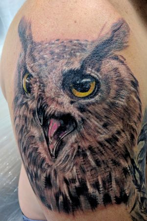 Owl color tattoo by DG in Eternaltattoo Cr