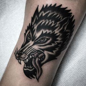 Tattoo by Steve Zimovan #wolf #blackwork #blackworktattoo #blackandgrey #brightandbold #traditional #traditionaltattoo #ashevillenc #ashevilletattoos