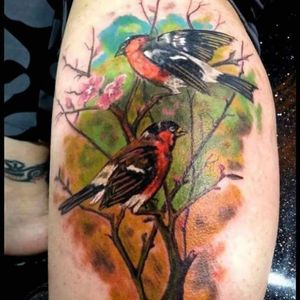 Couple of birds done in 2015 by DG