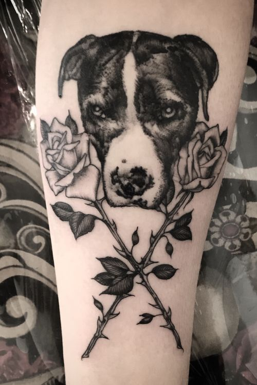 #pitbull pet portrait rose tattoo
