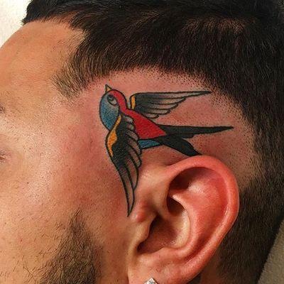 Sparrow on the head #philadelphia #sparrow #traditional #americana #boldwillhold #color #headtattoo