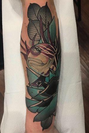 #neotraditional #Tattoodo #neotraditionaltattoo