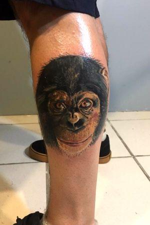 Tattoo realismo ,macaco.
