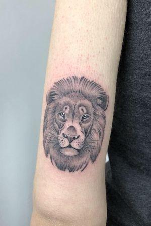 #singleneedle #lion #slimneedle #fineline #blackandgrey