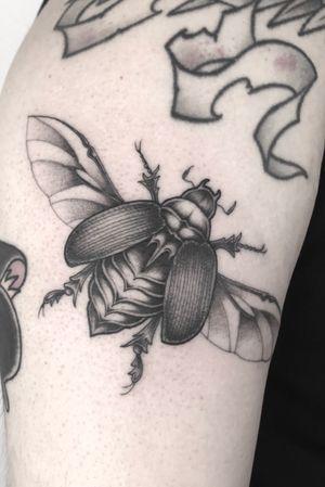 #singleneedle #fineline #blackandgrey #beetle #slimneedle