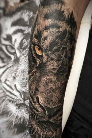 #tiger #animal #realistic #realism #blackandgrey #madmamont #armtattoo