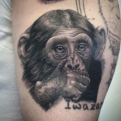 @realistic.ink #photooftheday #tattoo #singe #singetattoo #monkey #monkeytattoo #iwazaru #iwazarutattoo #wisemonkeys #realistictattoo #realistic #dot #dots #dotwork #dotworktattoo #stippletattoo #stipple #petitspoints #blackandgreytattoo #blackandwhitetattoo #lespetitspointsdefanny #tattoolausanne