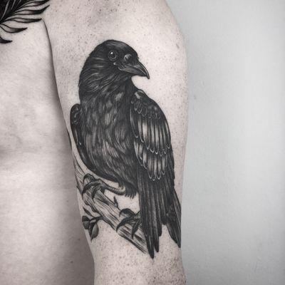 .| healed |. #blackandgrey #blackwork #raven #upperarm #henjafin #PechschwarzTattoo