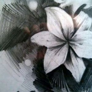 """""""Lily flower"""" Detail graphite."""
