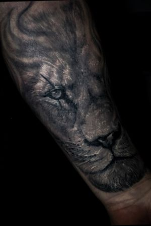 #liontattoo #blackandgrey #tattoo #tattoos #blackandgreytattoos