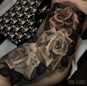 Hip roses by mike flores