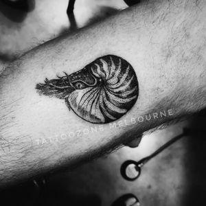 Nautilus #melbournetattoo #melbourne