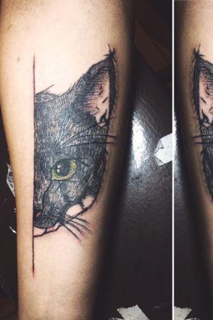 Retrato gato