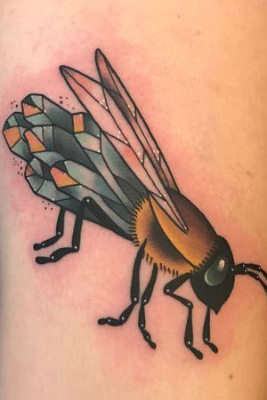 Crystal wasp
