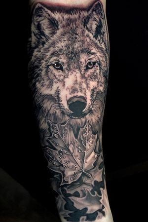 Wolf piece to start off a sleeve #wolftattoo #wolf #blackandgrey #tattoosleeve #animalportrait #realistictattoo #austin #ATX #kyletx #Texas #losangeles