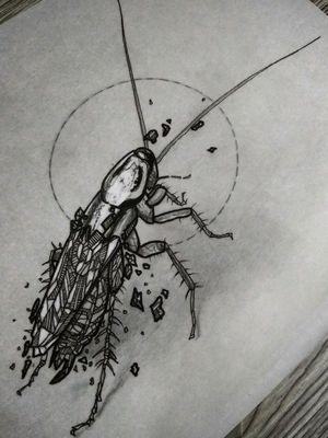 #cockroach